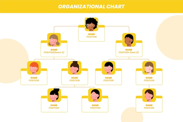 Infographie de l'organigramme