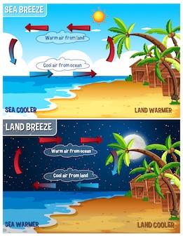 Infographie scientifique sur la brise de mer et de terre