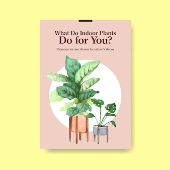 Informations sur la conception de modèles de plantes d'été et de plantes d'intérieur