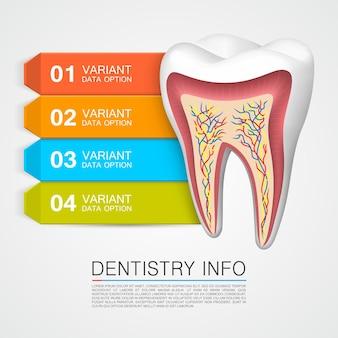 Infos dentaires art médical créatif. illustration vectorielle