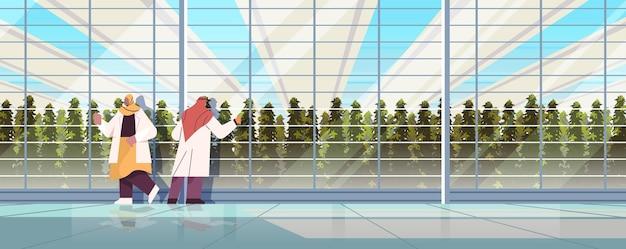 Ingénieurs agricoles arabes à la recherche de plantes en serre smart farm concept scientifique de l'agriculture horizontale pleine longueur vector illustration