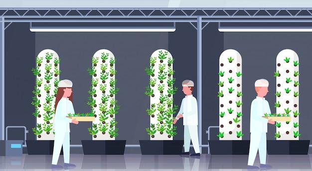 Les ingénieurs de l'agriculture en uniforme tenant des plantes en pot les gens qui travaillent à l'intérieur de la ferme verticale organique moderne vert industrie agricole concept horizontal pleine longueur
