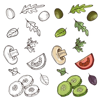 Ingrédients de salade végétalienne dessinés à la main.