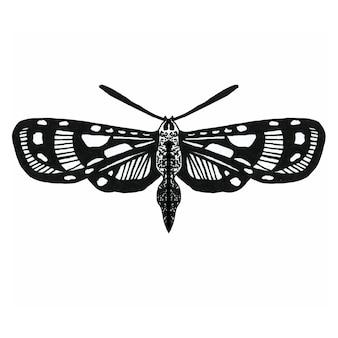 Insecte aux ailes