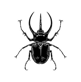 Insecte scarabée rino isolé. croquis noir et blanc.
