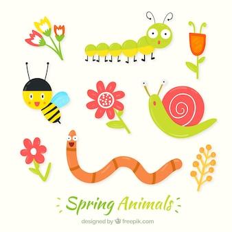 Insectes belles au printemps