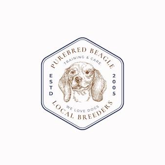 Insigne de cadre d'éleveur de chien local ou modèle de logo croquis de visage de race beagle dessiné à la main