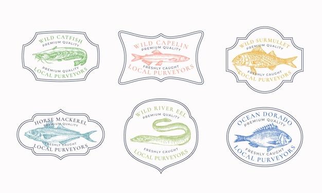 Insignes de cadre vintage ou modèles de logo ensemble poisson-chat capelan chinchard surmullet etc illustration...