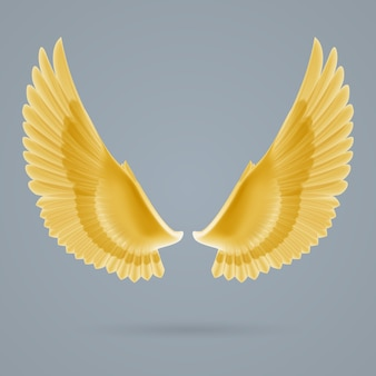 Inspirer les ailes