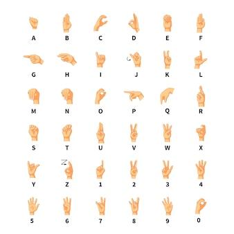 Interprète en langue des signes, signes de l'alphabet latin sur blanc