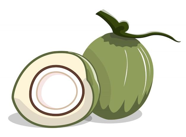 Isoler la noix de coco verte et demi-tranche