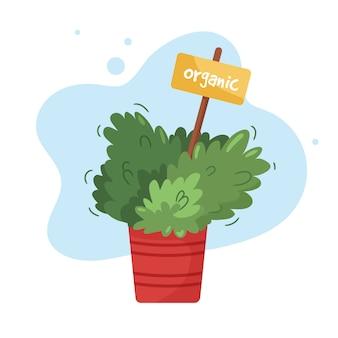 Jardin culinaire bio sur le rebord d'une cuisine. herbes en pot en pot de fleurs orange. plante domestique en pot d'argile avec étiquette marqueur de graines. illustration sur blanc.