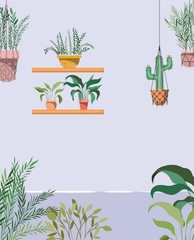 Jardin de la maison avec des plantes suspendues