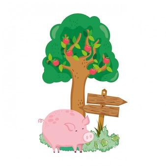 Jardin avec signal de flèche en bois et cochon