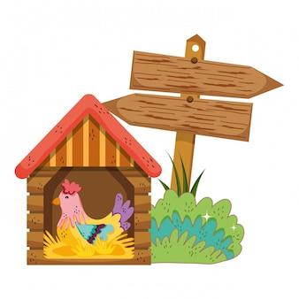 Jardin avec signal de flèche en bois et coq