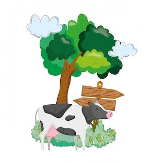 Jardin avec signal de flèche en bois et vache