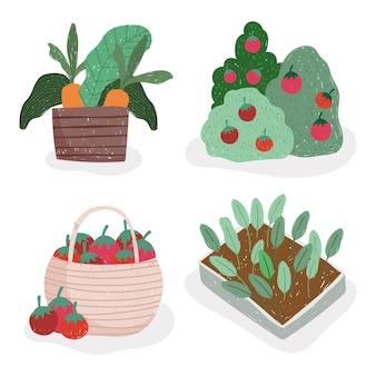 Jardinage et agriculture tomates carottes et plantes illustration