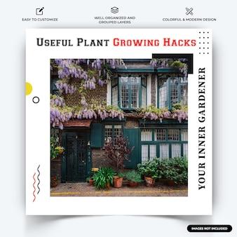 Jardinage à la maison instagram post web banner template vecteur vecteur premium