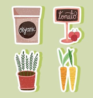 Jardinage pack illustration de carottes et tomates plante en pot bio