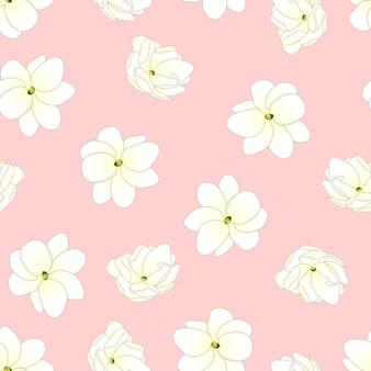 Jasmin d'arabie sur fond rose clair