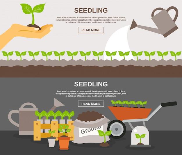 Jeu de bannière de semis
