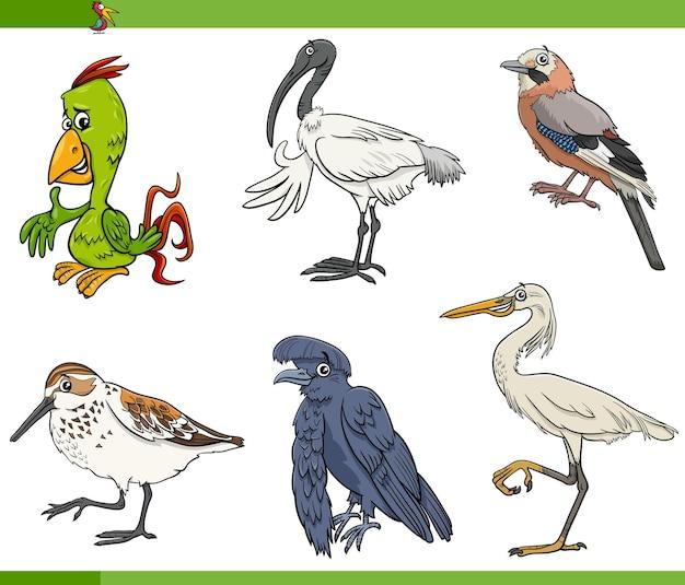 Jeu de caractères animaux espèces d'oiseaux de dessin animé
