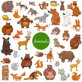 Jeu de caractères animaux sauvages de dessin animé