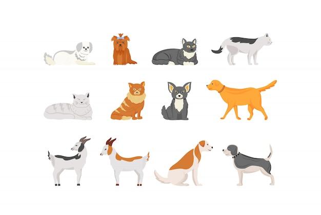 Jeu de caractères de couleur animaux domestiques