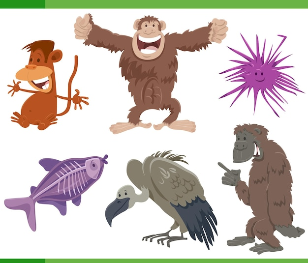 Jeu de caractères d'espèces d'animaux sauvages de dessin animé drôle