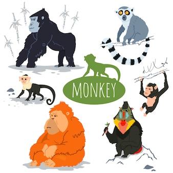 Jeu de caractères de singe.