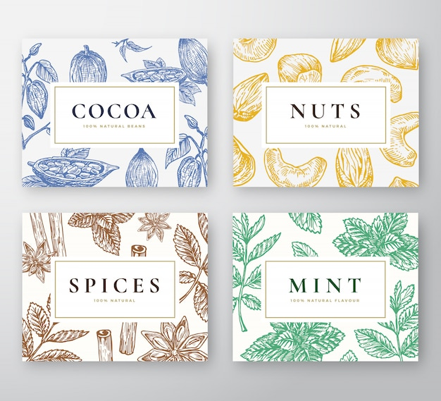 Jeu de cartes de haricots de cacao dessinés à la main, menthe, noix et épices. collection d'arrière-plans de croquis abstrait avec typographie rétro chic. cacao dessiné à la main, noix, branches de menthe et épices.