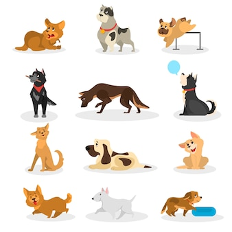 Jeu de chien. collection d'animaux faisant une activité différente