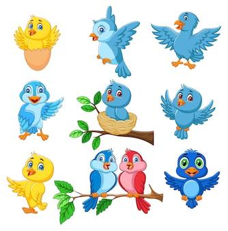 Jeu de collection dessin animé oiseaux heureux