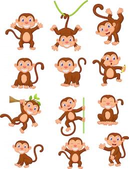Jeu de collection de dessin animé de singe heureux