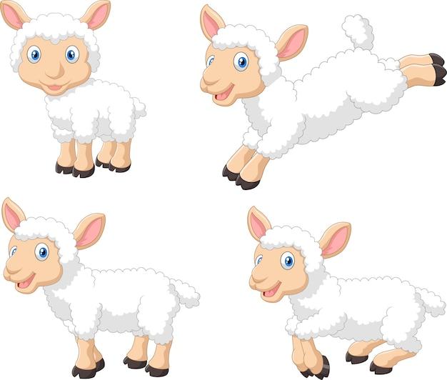 Jeu de collection de moutons de dessin animé mignon