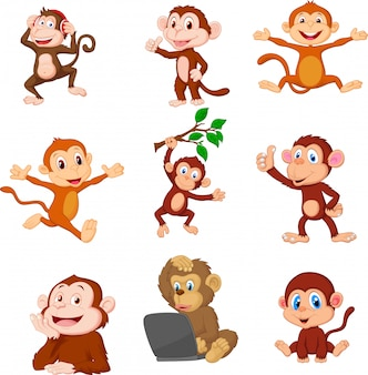 Jeu de collection de singes heureux cartoon