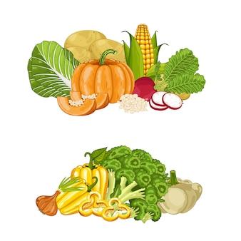 Jeu de composition isolée de légumes biologiques frais