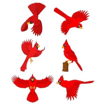Jeu de dessin animé cardinal
