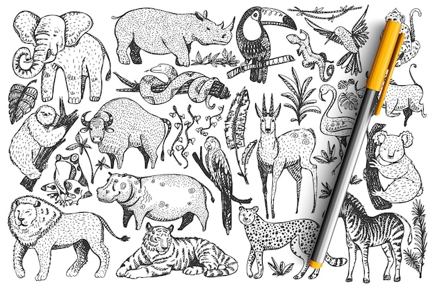 Jeu de doodle animaux. collection de mammifères safari africains sauvages mignons dessinés à la main