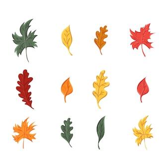 Jeu de feuilles d'automne, isolé