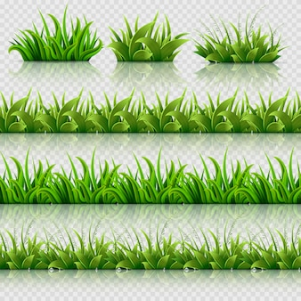 Jeu de frontières sans soudure vecteur herbe verte