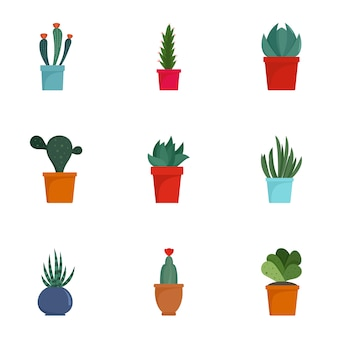 Jeu d'icônes de cactus succulentes. ensemble plat de 9 icônes de cactus succulentes