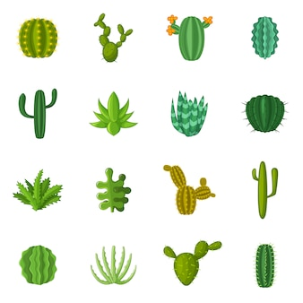 Jeu d'icônes de cactus vert