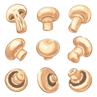 Jeu d'icônes de champignon, style cartoon