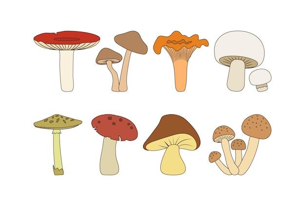 Jeu d'icônes de champignons modifiables d'automne de dessin animé illustration vectorielle de nourriture