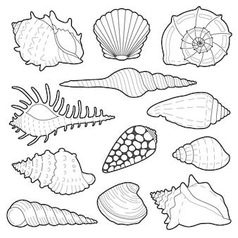 Jeu d'icônes de coquillages de mer isolé sur fond blanc
