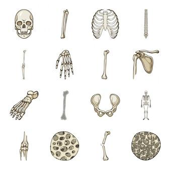 Jeu d'icônes de dessin animé squelette