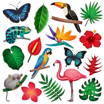 Jeu d'icônes exotiques tropicales