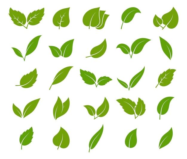 Jeu d'icônes de feuilles vertes. différentes formes d'élégance élément botanique de jeunes arbres, emblème de tisane, feuille eco logo bio feuillage organique étiquette aménagement paysager environnement vecteur isolé silhouette collection