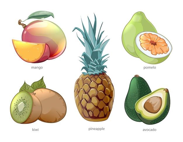 Jeu d'icônes de fruits tropiques exotiques de dessin animé. pomelo mangue ananas kiwi
